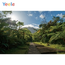 Yeele Landscape Photocall Forest Mount Room Decor Photography Backdrops Personalized Photographic Backgrounds For Photo Studio