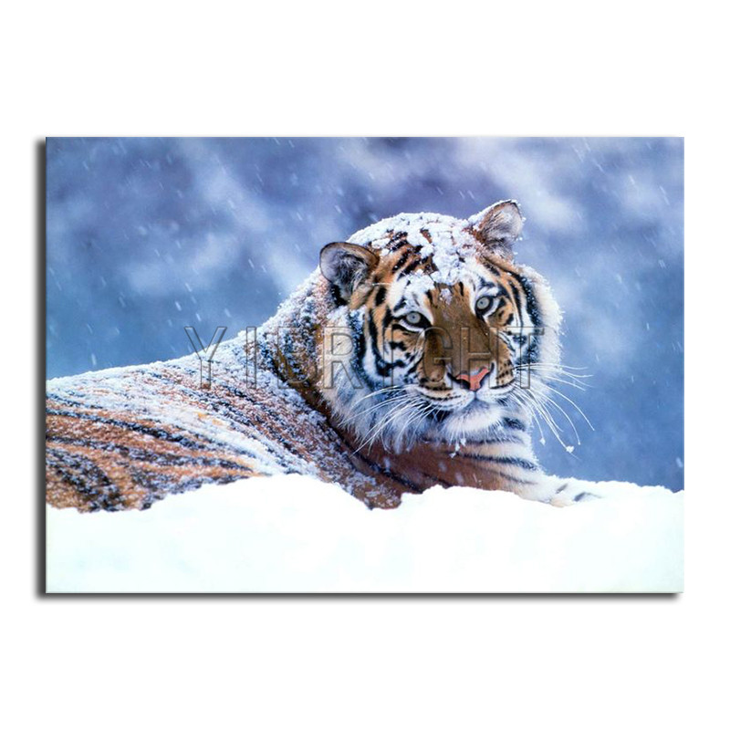 Cheap Price Zooya Diamond Embroidery 3d Diamond Painting Gift Diy Diamond Mosaic Painting Rhinestones The Tiger Running In The Snow Rf997 Arts,crafts & Sewing