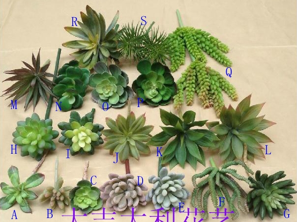 Simulation succulents plants fake green interior living for Decoration jardin cactus