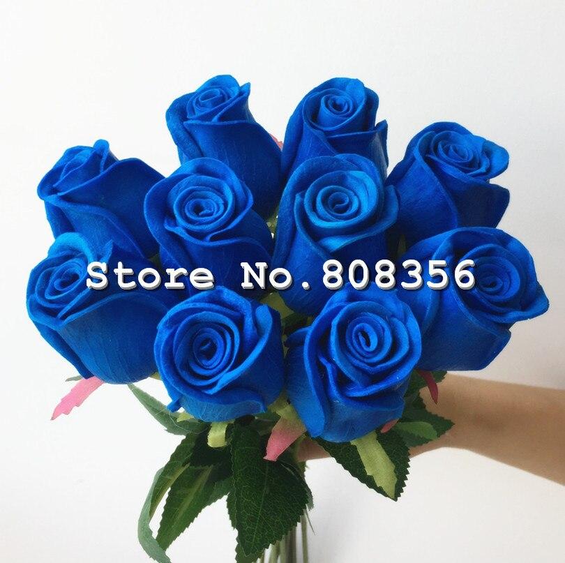 IMG_7499