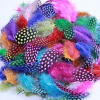 500Pcs/Lot 5-12CM Guinea Fowl Spotted Feathers Mixed Color Craft Feather FREESHIPPING wholesale