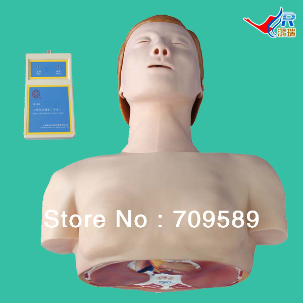 Vivid CPR Training manikin, First Aid manikin, Female CPR Mannequin new 2pcs female right left vivid foot mannequin jewerly display model art sketch