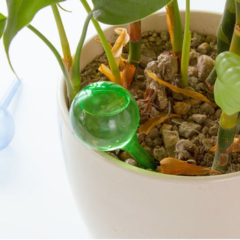 30^Flower Automatic Watering Device Houseplant Plant Pot Bulb Globe Garden House Waterer Water Cans Green best selling 2020 image