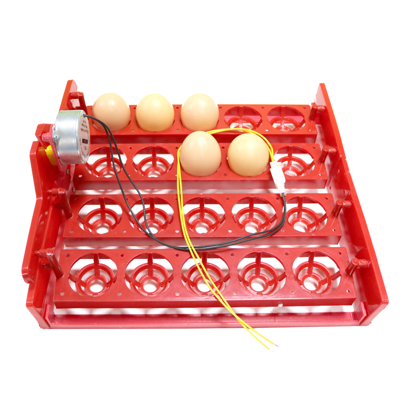 20 Egg Incubator Turn Eggs Tray Eggtester Automatically Turn The Eggs Experimental Teaching Equipment Voltage 220V / 110V / 12V