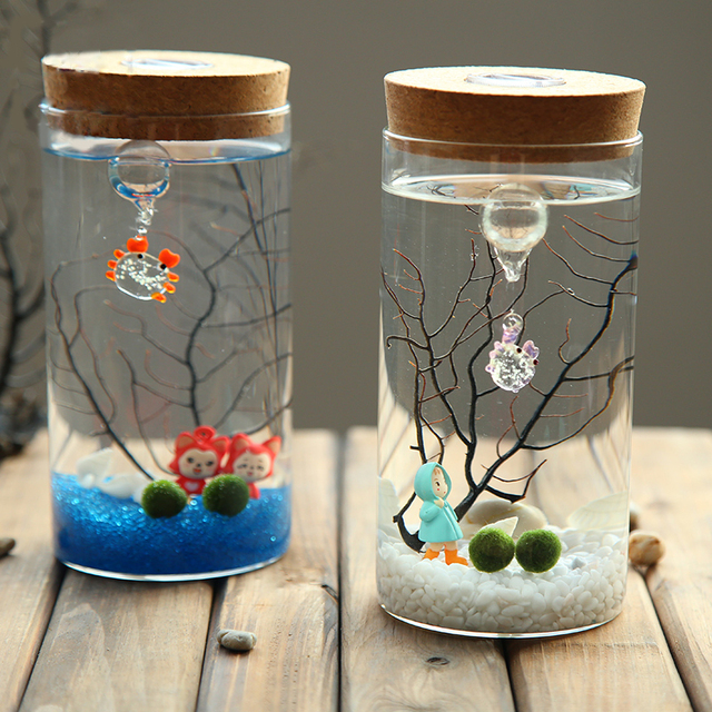 Decorative Glass Bottle Jar Hydroponic Terrarium Container Glow Custom Decorative Glass Bottles With Stoppers