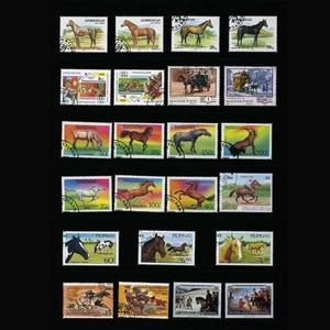 Image 3 - Horse , 250 шт./лот из всего мира неиспользованные почтовые штампы с почтовой маркой для коллекционирования печатных плат