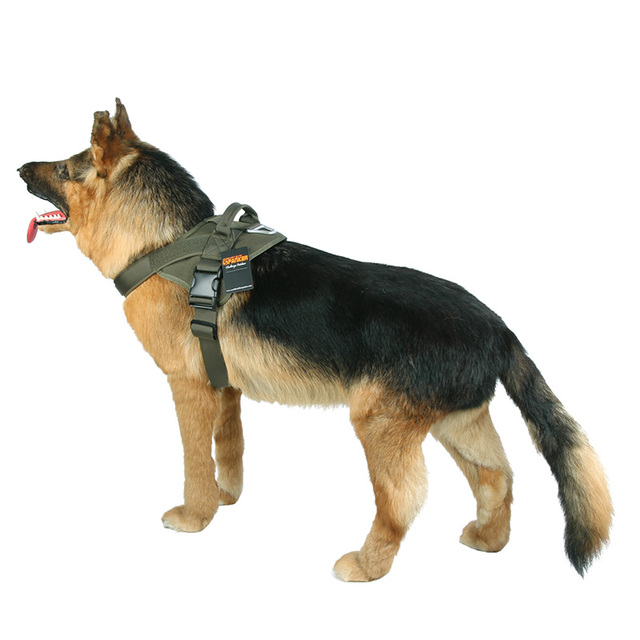 Full Heavy Duty Harness