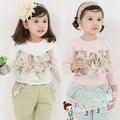 Outono meninas, Bonito crianças twinset estilo coreano princesa harem calças conjuntos