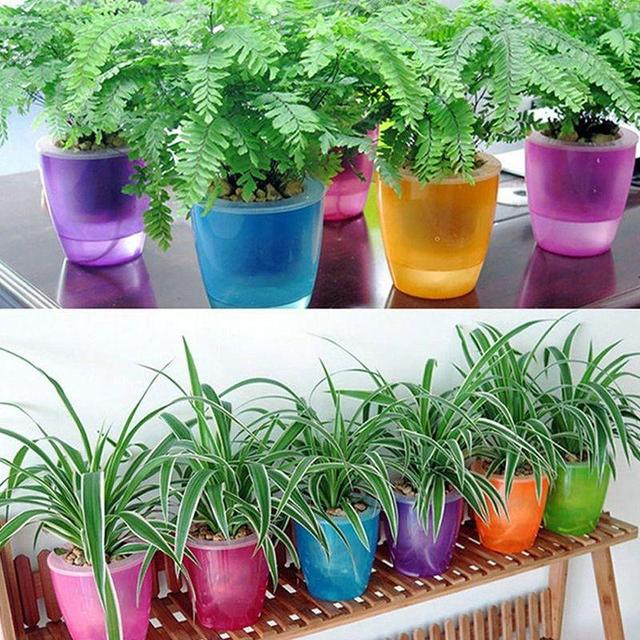 AsyPets Colorful Self Watering Round Planter Flower Pot Home Garden Decor  Professional Green Plant Vase