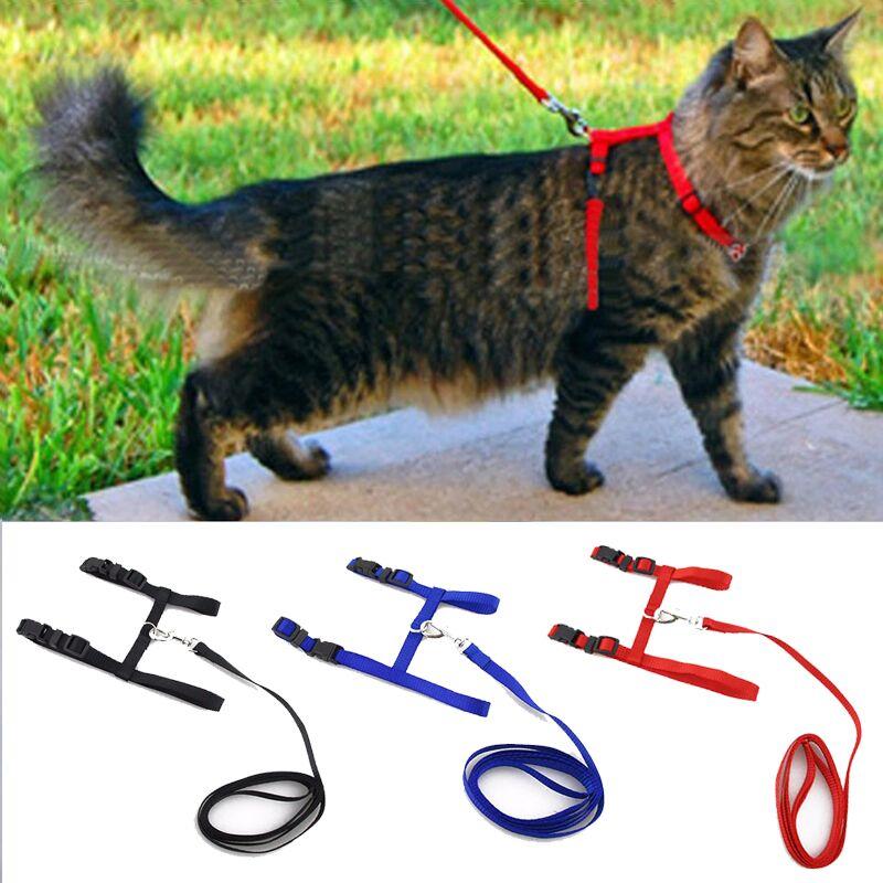 Collar de gato arnés correa ajustable de Nylon para mascotas tracción perro gato gatito cuello Halter gato gatos productos para mascotas cinturón de arnés