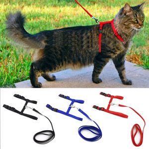 Cat Dog Collar Harness Leash Adjustable Nylon Pet Traction Cat Kitten Halter Collar gato Cats Products Pet Harness Belt(China)