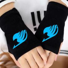 Fairy Tail Warm Gloves