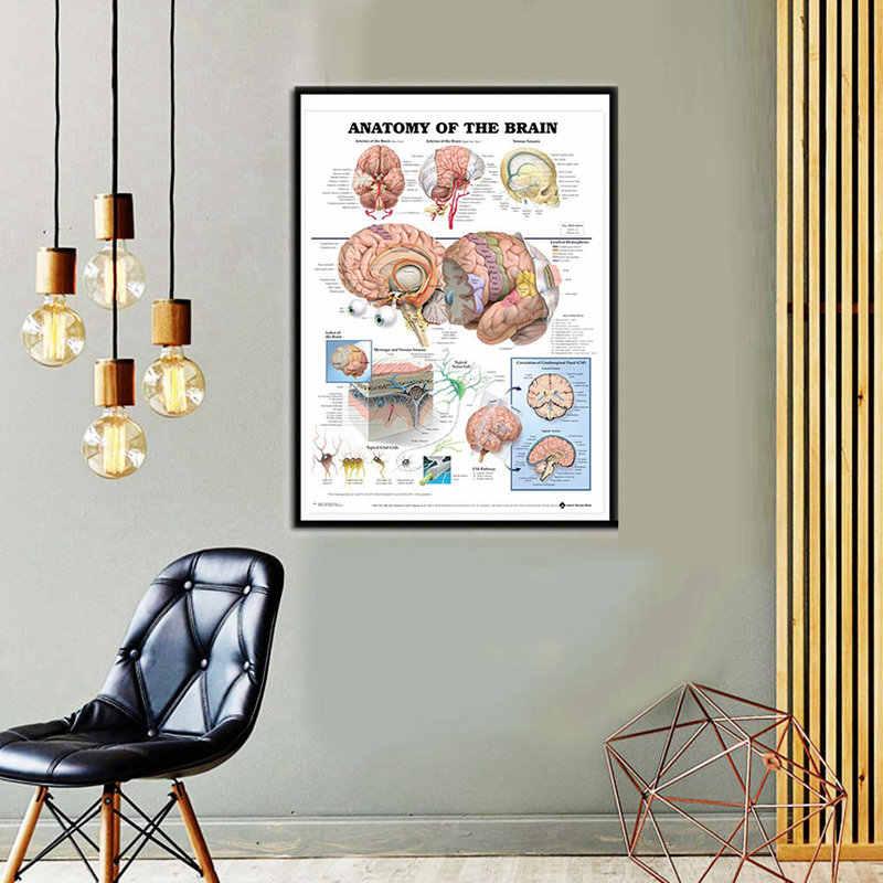 Анатомия человека мышцы постер система искусство шелковая диаграмма Печать тела карта настенные картины для медицинского образования домашний декор