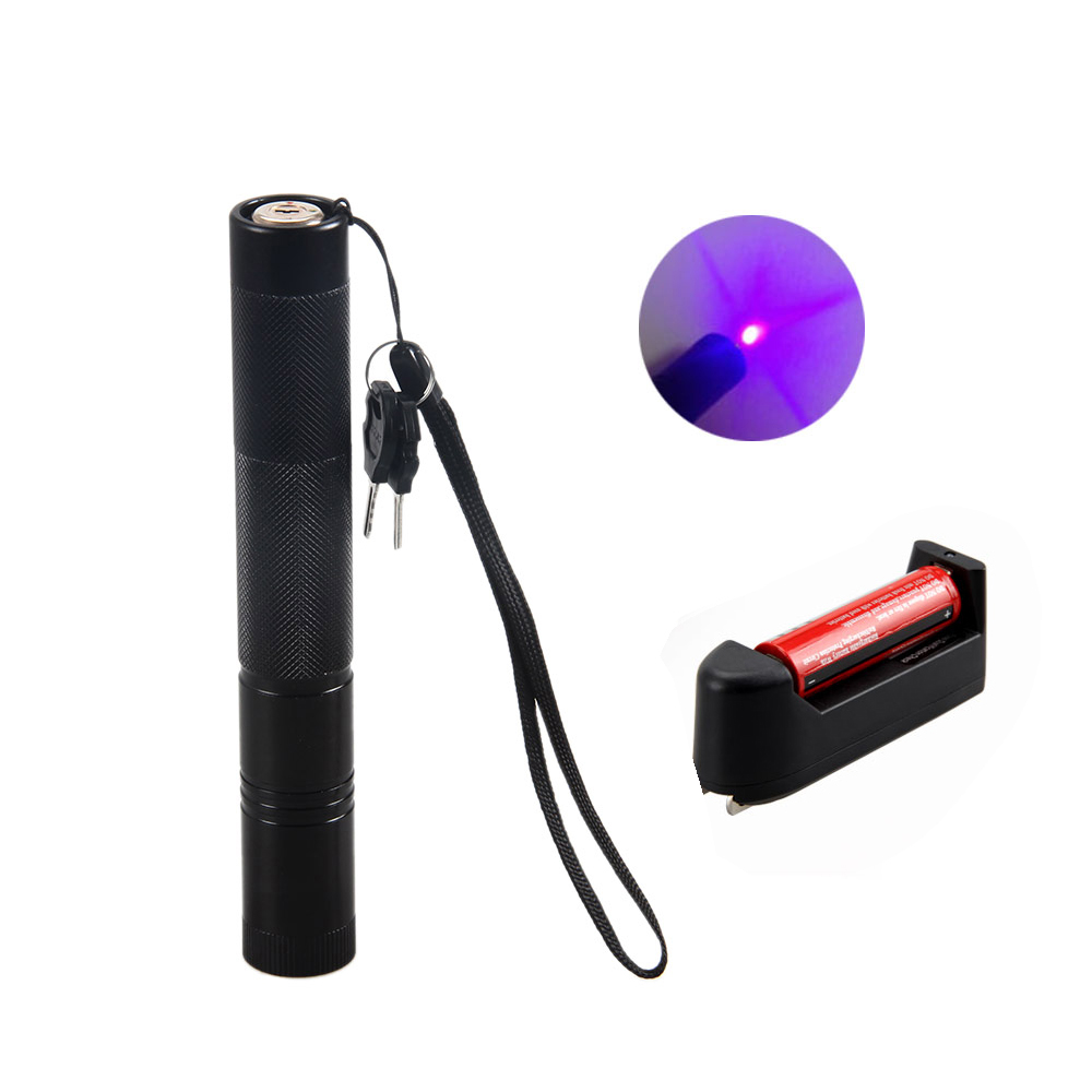 10mile purple Laser Pointer Pen 532nm 3mw Powerful Visible Beam Light Lazer Teaching Outdoor Playing+charger+battery