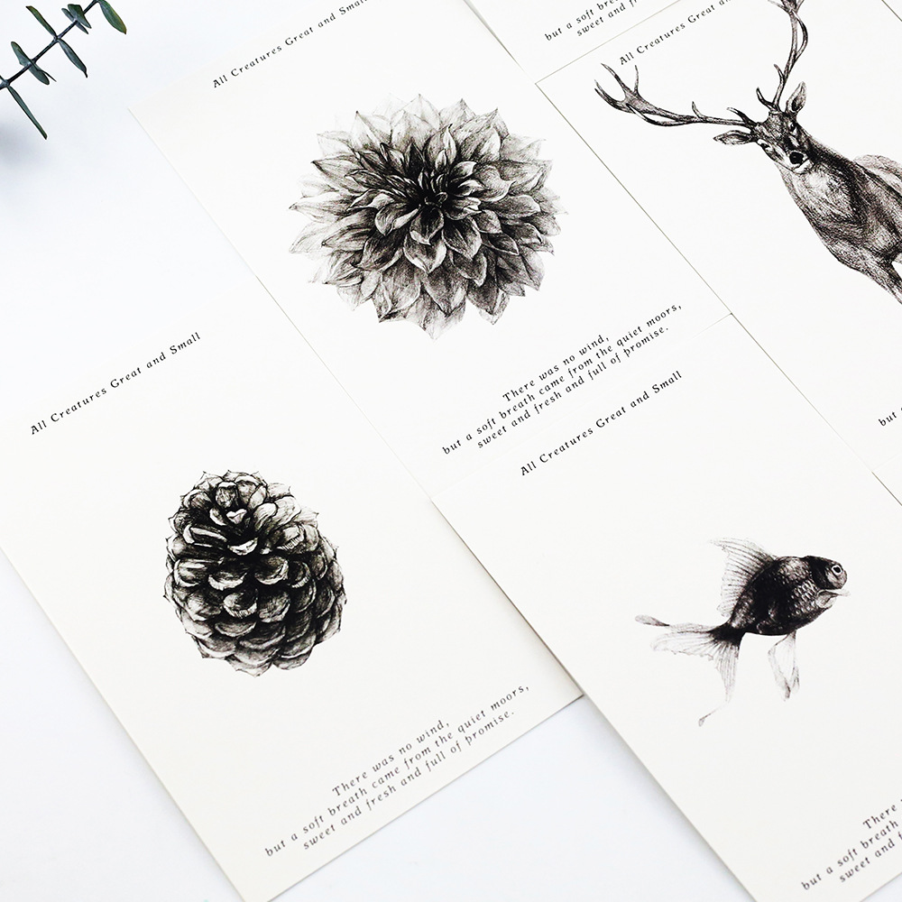 30pcs 1lot cute black and white nature greeting cards postcards 30pcs 1lot cute black and white nature greeting cards postcards birthday letter business gift card set message card ii1 01 in business cards from office m4hsunfo