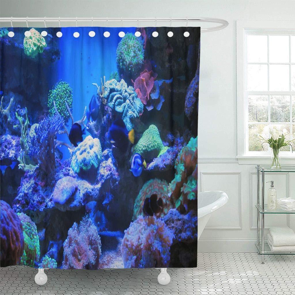 Us 17 06 36 Off Shower Curtain Hooks Colorful Fish Blue Aquarium Light Salt Water Saltwater Dream Fauna Island Decorative Bathroom In Shower