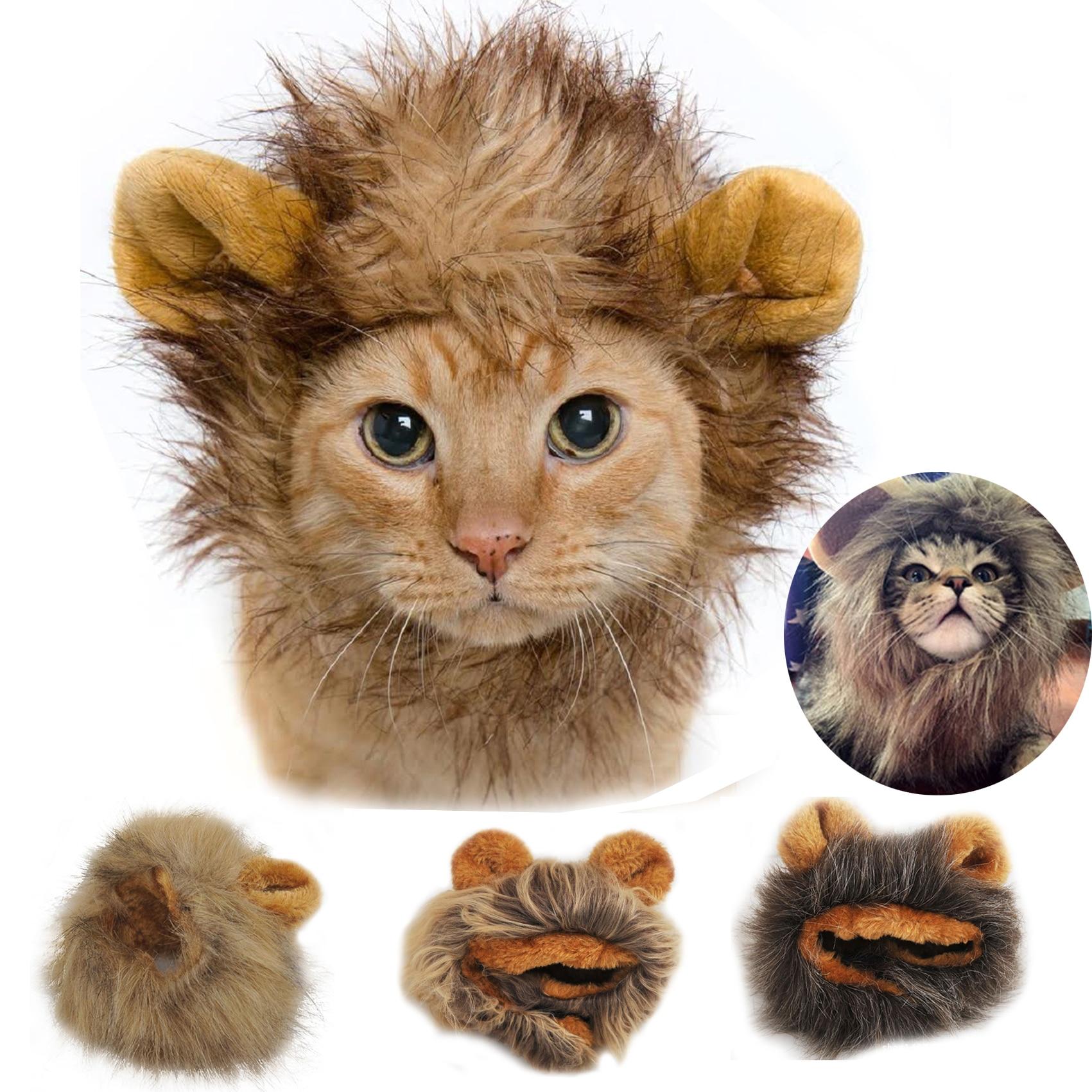இ1 unid mascotas perro gato lindo divertido sombreros perrito León ...