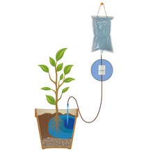 Automatic Water Bag Automatic Watering Device Drip arrow Plant Irrigation Tools Lazy Planting Kit Flower Fertilization все цены