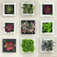 Wall Decoration Simulation Flowers And Succulents Wall Hangings Home Decoration Wedding Decoration