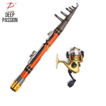 DEEP PASSION Sea Fishing Rod Reel Set Mini Rod Pole Carp Portable Telescopic Stick Pesca Fishing Rod Holder for Fishing Pole