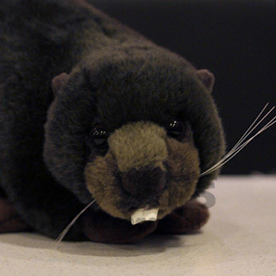 Beaver Simulation Stuffed Plush Toy Animals font b Cute b font font b Pillow b font