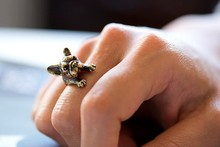 French bulldog Fashion Antique Gold Silver Vintage Adjustable Rings for women