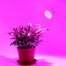 36 60 80 126 200 led grow light 9W 12W 60W Hydroponic lighting with Clip plants Lamps for flower system indoor garden greenhouse