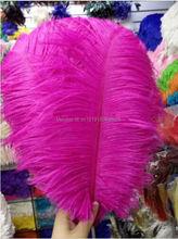Grossist! 50PCS / mycket rosa strutsfjädrar 10-12 tum / 25-30 cm naturlig fjäder, DIY bröllopsinteriörer