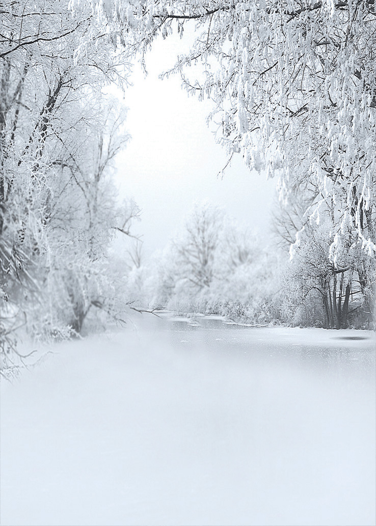 Popular Snow Backgrounds Buy Cheap Snow Backgrounds Lots
