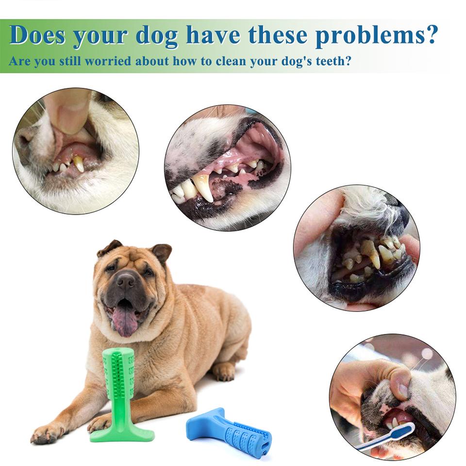 Juguete para limpiar los dientes para perro 1