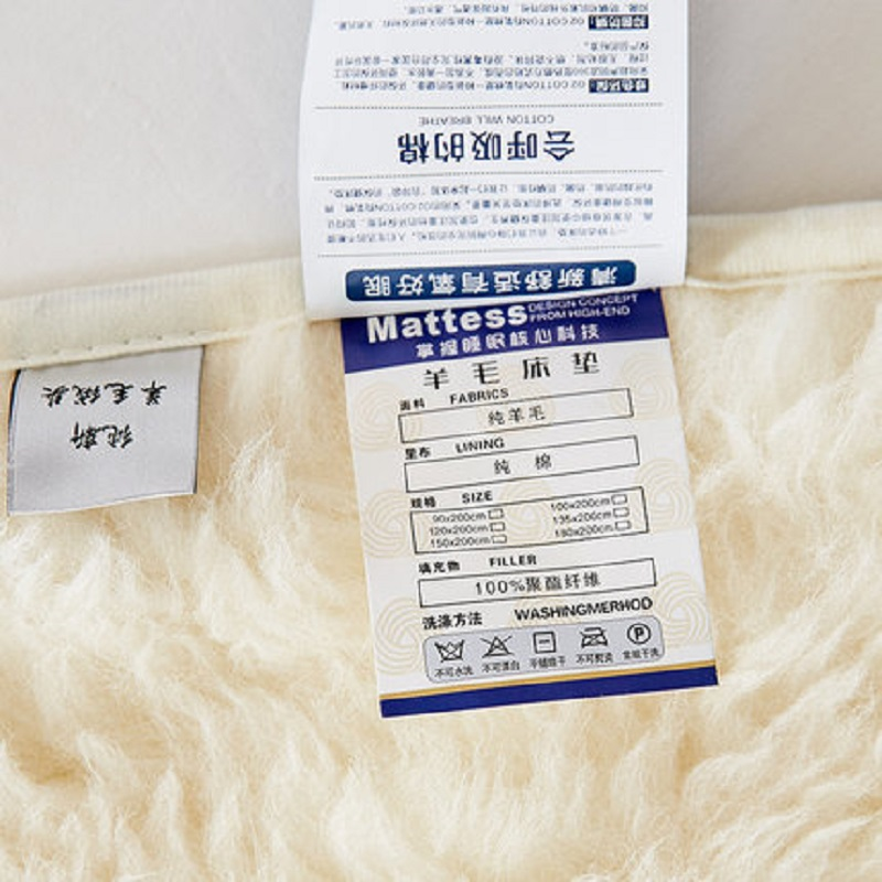 Image 3 - 100% cashmere  Mattress Thickening Coral velvet Tatami Soft Super Warm Fleece Cushion Dormitory Hotel Winter Bed Mat-in Mattresses from Furniture