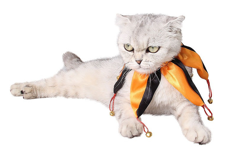 Halloween Clown Pet Cat Dog 6 Horn Halloween Clown Costume Cosplay Collar Tie Scarf with Bell Masquerade Party Gift Pet Supplies