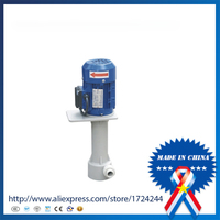 9.19 220v50hz chemcial Vertical Resistant Submerged Pump 1/8 Alcohol Circulating Pump