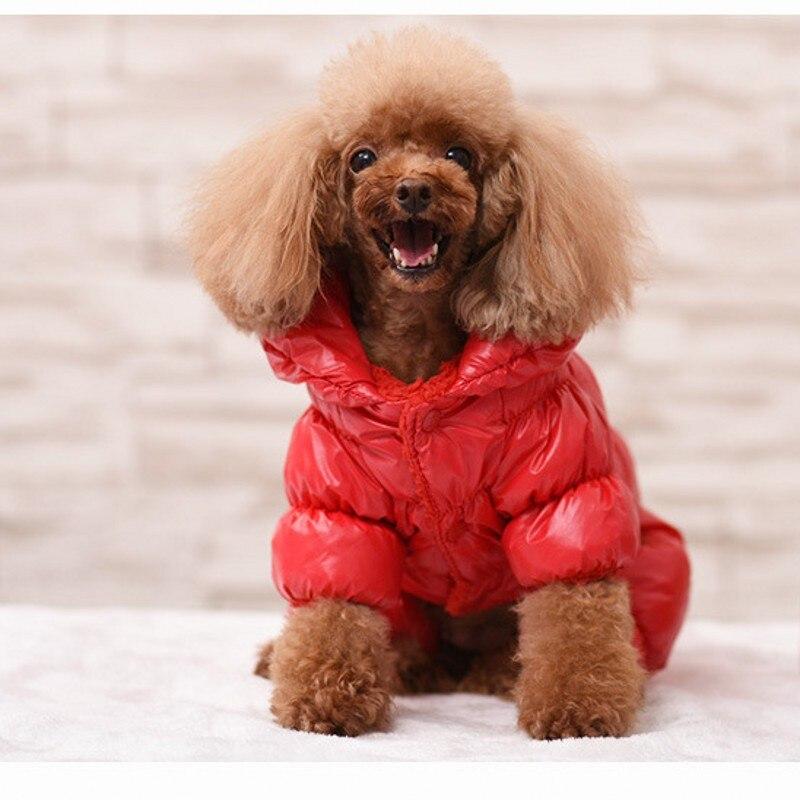 Новинка, супертолстая ветрозащитная зимняя одежда большого размера для маленьких собак, комбинезон, теплое пальто для собаки, куртка, лыжный костюм, одежда-5