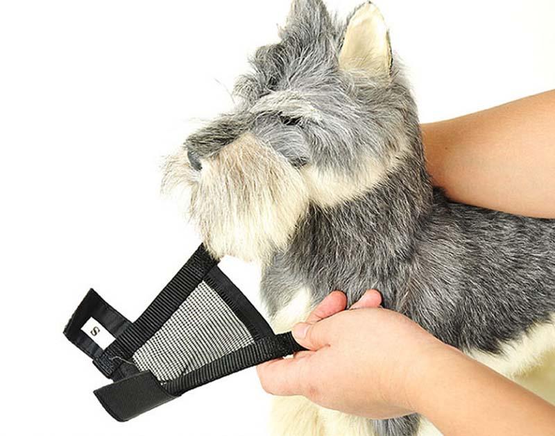SYDZSW Superior Quality Dog Muzzle Breathable Mesh Black Nylon Pet Muzzle for Dog Puppy Dog Mask Prevent Bark Bite Pet Products7