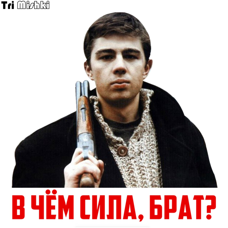 Tri Mishki WCS381 14*14cm What Is The Power, Brother? Sergey Bodrov Car Sticker Funny Colorful Auto Automobile Decals