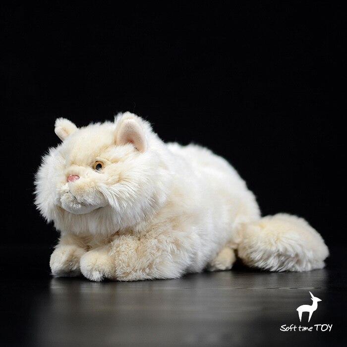 Peluches présentes chat persan Animal en peluche vraie vie jouets en peluche cadeau d'anniversaire poupées femmes