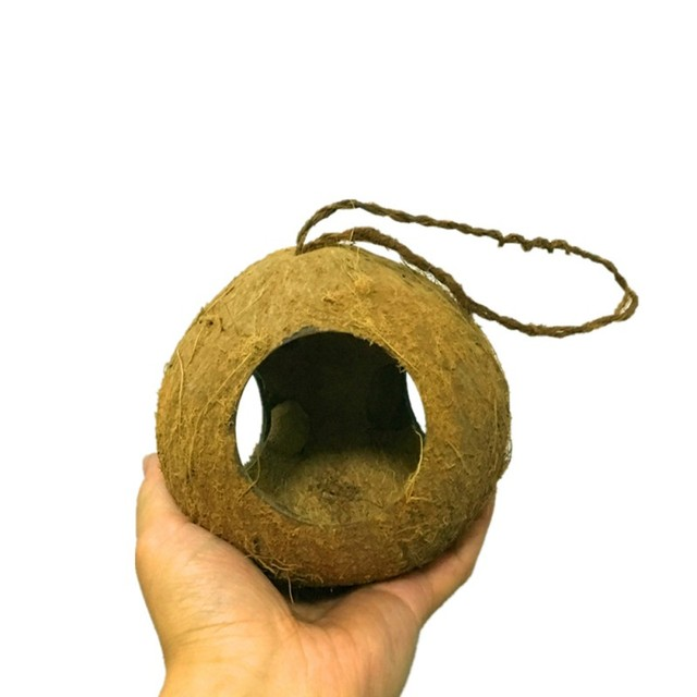 Pet Coconut Shell Bird Parrot Nest House Hut Cage Feeder Toy With Chain Budgie Parakeet Cockatiel Conure Hideaway Husk 3
