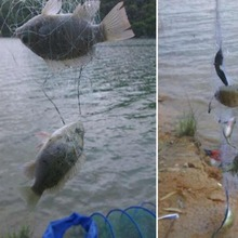 Shoal Fishing Net Copper Spring Small Mesh Netting Luminous Beads Swivel Beads Swivel Fishing Tackle Fishnet