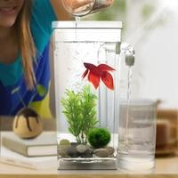 Acrylic Aquarium Multicolour Fish tank With LED light Office Desk Transparent Fish Bow
