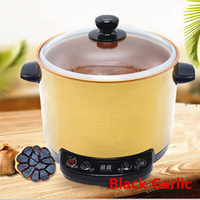 Automatic 6L Black Garlic Fermenter Household DIY Zymolysis Zymosis Pot Maker 220V Black Garlic Fermenting Machine
