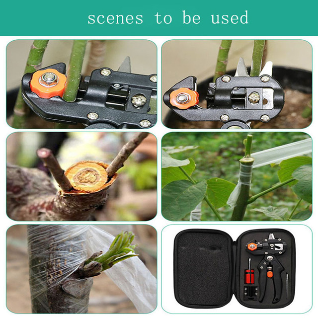 Lange Cloth Boxes Grafting Shears with 2 Blades Tree Grafting Tools Secateurs Scissors Vaccination Knife Cutting Pruner A9