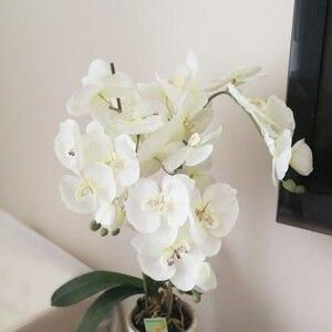 Image 2 - Artificial de seda branco orquídea flores borboleta alta qualidade traça phalaenopsis falso flor para casamento decoração do festival casa