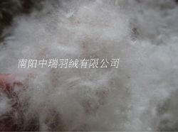 1 رطل/السعر & 95% أوزة أبيض أسفل & أوزة أسفل لحاف حشو & ملء الطاقة 850 ++ cuin paypal مقبول