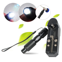 Portable Handheld LED Cold Light Source Endoscopy 3W 10W CE proved