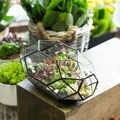 Modern cam saksı büyük düzensiz çok amaçlı geometrik cam teraryum fener etli bitki saksı 11 inç yükseklik