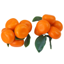050 Simulation of fruit false orange branch simulation kumquat model