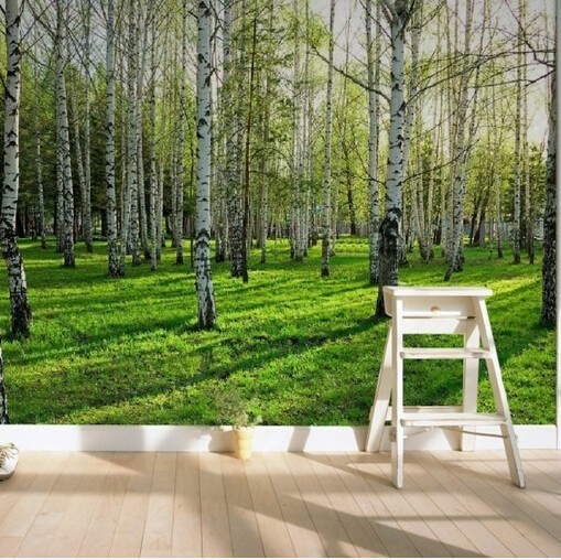 Fresh Birch Forest New Large Custom Wallpaper Mural TV