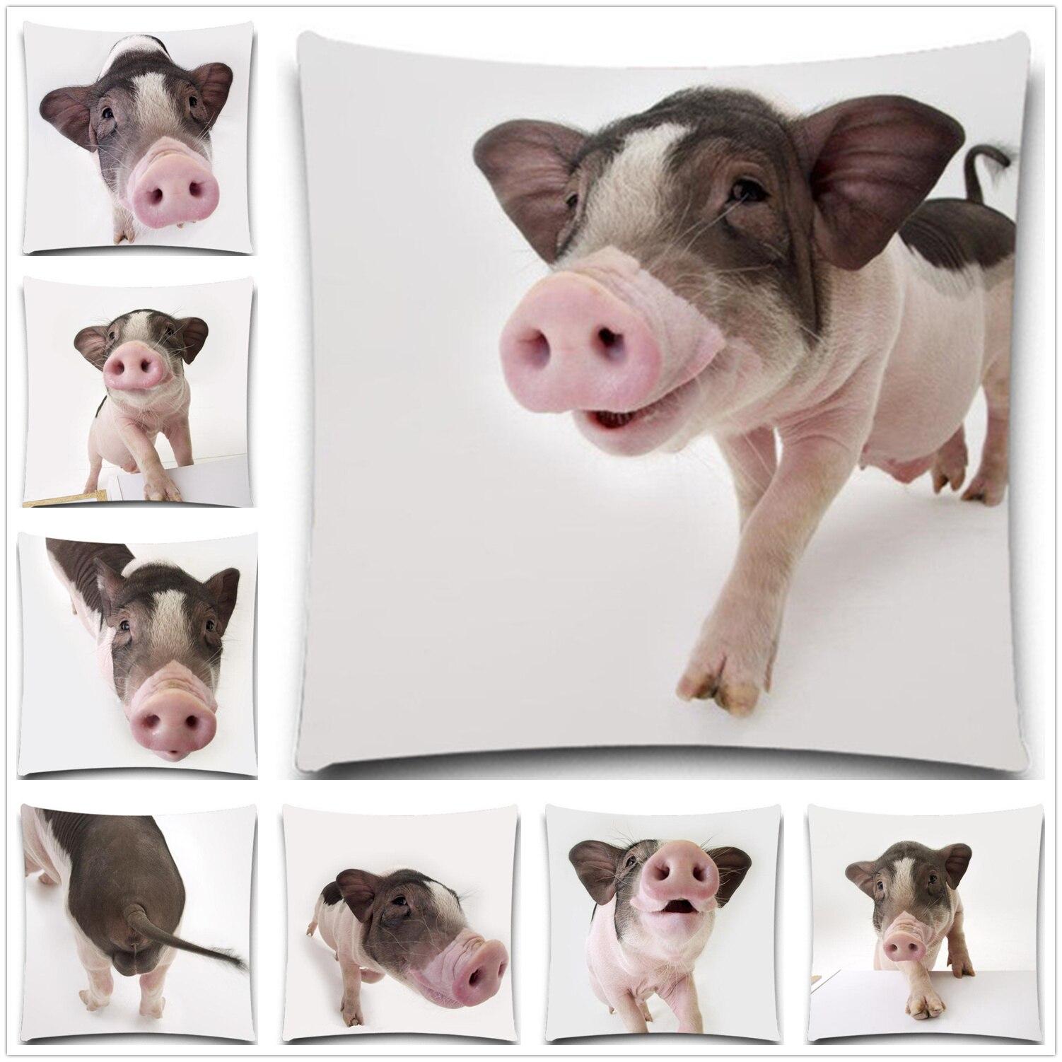 Babi di bawah lensa 2D cetak katun polyester sarung bantal kreatif Bantal kasus Persegi 5 ukuran 9 a
