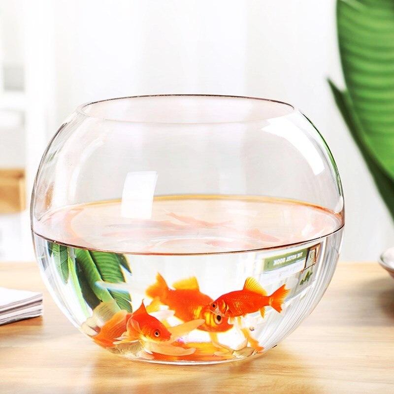Diameter=10cm Beautiful Flat Mouth Glass Terrarium Fishbowl Creative Glass Globe Aquarium Home Decoration